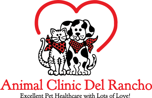 Animal Clinic Del Rancho